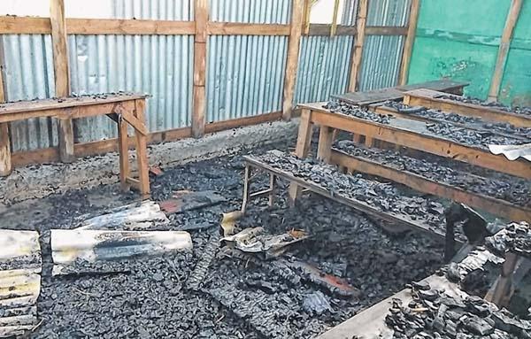 Inferno guts school, boar