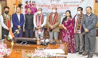 Mao Cherry Blossom Festiv
